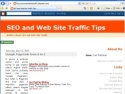 Small Screenshot picture of SEO and Web Site Traffic Articles